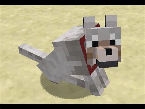 Dog Playing Fetch in Minecraft - YouTube