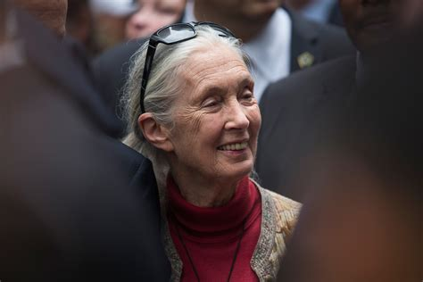 Jane Goodall Says This Specific Skill Is Key in Inspiring