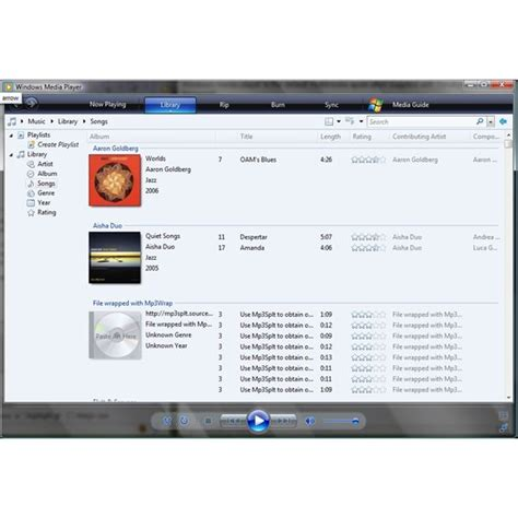 What Formats can Windows Media Player 11 Play? Additional